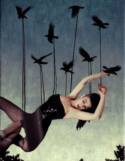Crows copy